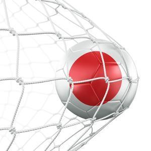 Japanese Soccer Ball in a Net by zentilia
