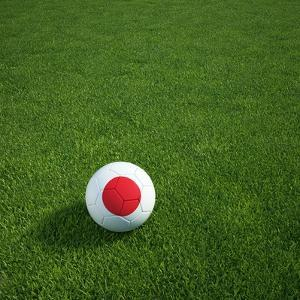 Japanese Soccerball Lying on Grass by zentilia