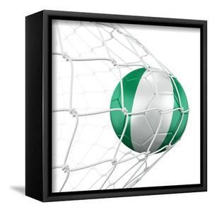 Nigerian Soccer Ball in a Net by zentilia
