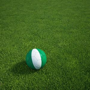 Nigerian Soccerball Lying on Grass by zentilia