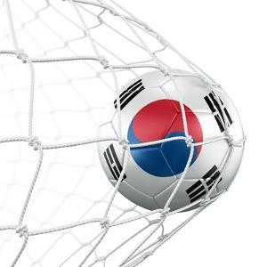 South Korean Soccer Ball in a Net by zentilia