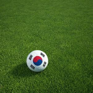 South Korean Soccerball Lying on Grass by zentilia