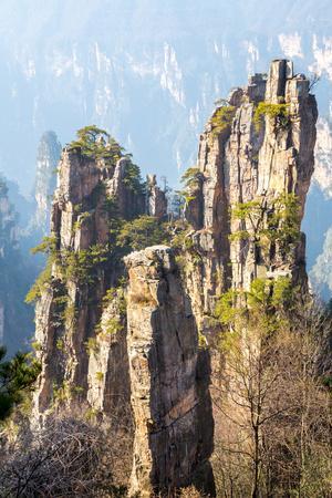 https://imgc.allpostersimages.com/img/posters/zhangjiajie-national-forest-park-at-wulingyuan-hunan-china_u-L-Q1058390.jpg?p=0