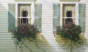 Window Boxes by Zhen-Huan Lu
