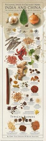 Regional Spices - India & China by Ziegler/Keating