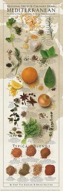Regional Spices - Mediterranean by Ziegler/Keating