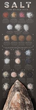 Salt - The Edible Rock by Ziegler/Keating
