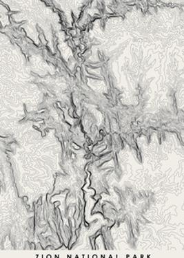 Zion Topographical Print