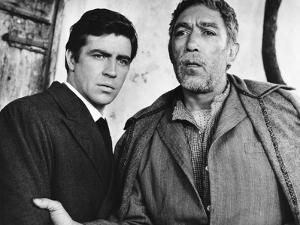 Zorba the Greek, L-R, Alan Bates, Anthony Quinn, 1964