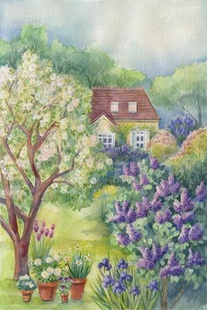 A Lilac Garden