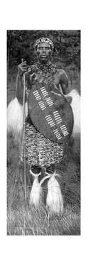 Zulu Chief, 1926