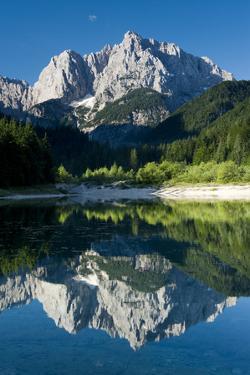 Mount Prisojnik (2,547M) with Reflection in a Small Pond , Kranjska Gora, Triglav Np, Slovenia by Zupanc