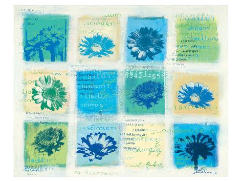 Marguerites Forever Reproduction d'art