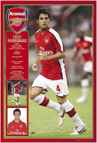 Arsenal - Fabregas Poster