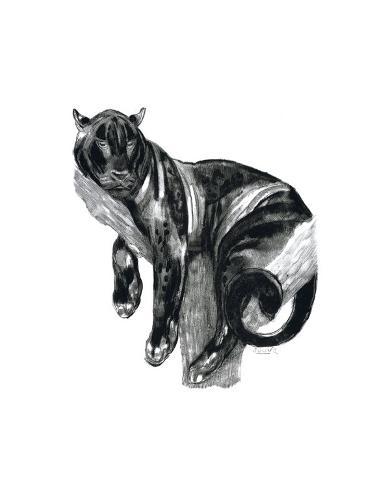 Panther I Reproduction giclée Premium