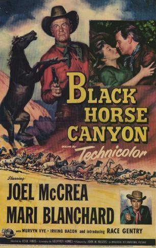 Black Horse Canyon Affiche originale