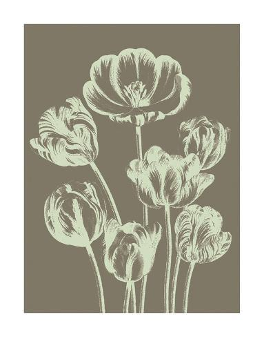 Tulip 12 Reproduction d'art