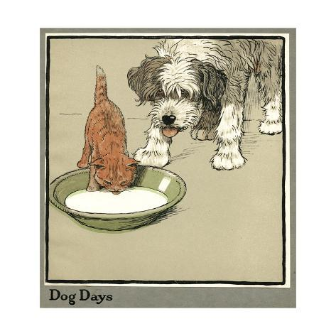 Rufus the Cat Drinks from a Bowl, Watched by a Dog Reproduction procédé giclée