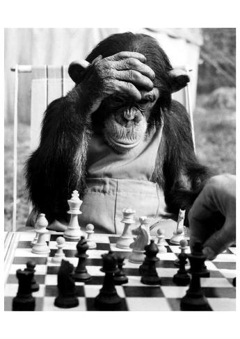 Checkmate Reproduction d'art