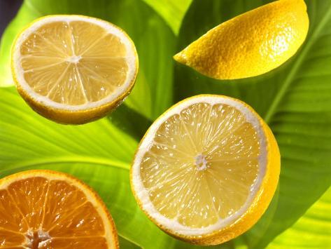 Citrus Fruits on Banana Leaves Reproduction photographique