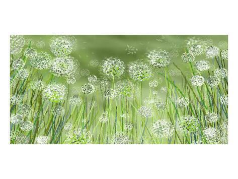 Dandelion party Reproduction d'art