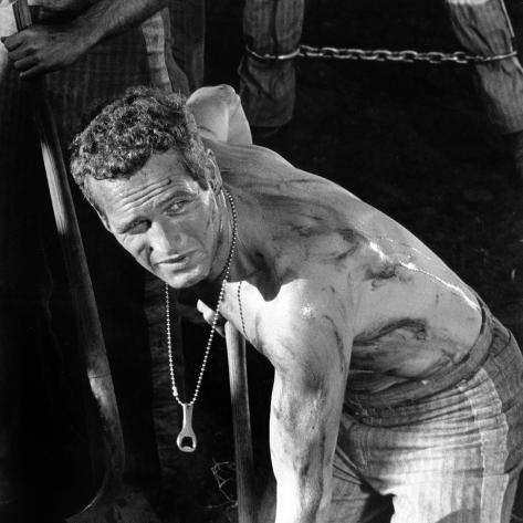 Cool Hand Luke, Paul Newman , 1967 Photographie