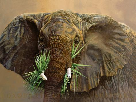 Tembo Reproduction d'art