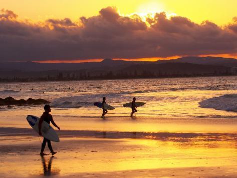 Surfers at Sunset, Gold Coast, Queensland, Australia Reproduction photographique