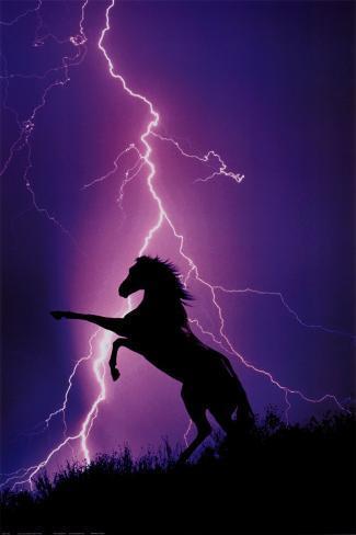 Eclairs et silhouette de cheval Poster