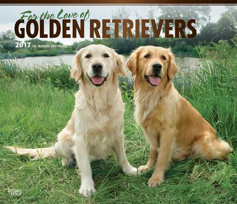 For The Love Of Golden Retrievers Deluxe 2017 Calendar Calendriers