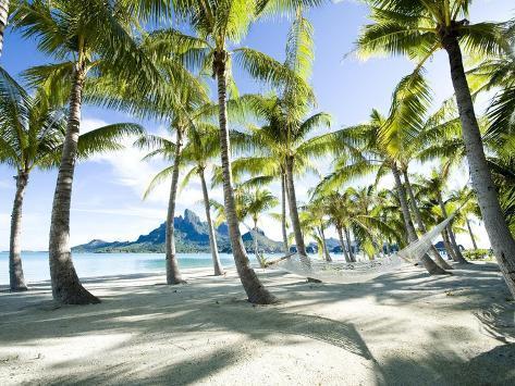 Hammock at Bora Bora, Tahiti Toile tendue sur châssis sur ...
