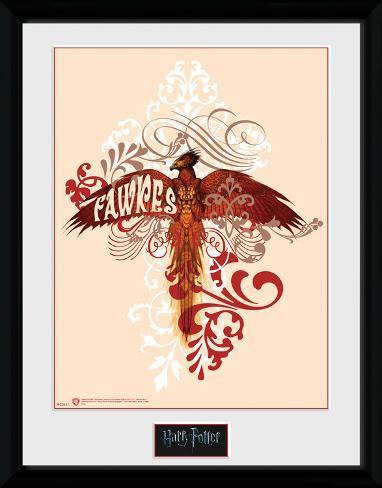 Harry Potter - Fawkes Reproduction encadrée pour collectionneurs