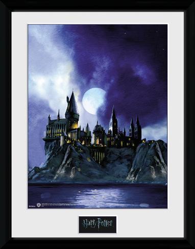 Harry Potter - Hogwarts Painted Reproduction encadrée pour collectionneurs