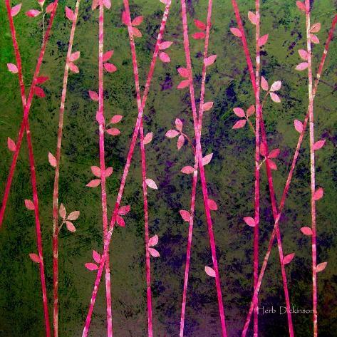 Feng Shui Cane Hot Pink Reproduction photographique