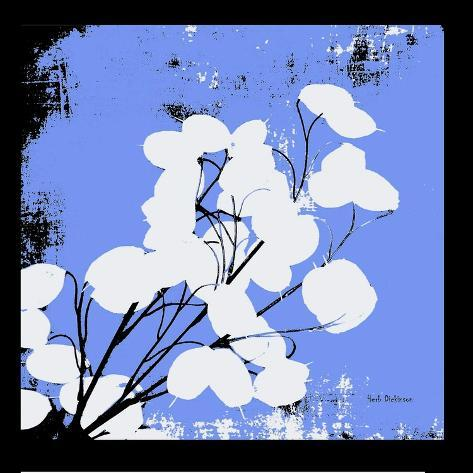 French Blue Money Art Reproduction photographique