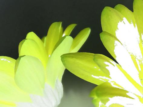Gerber Time Green I Reproduction d'art