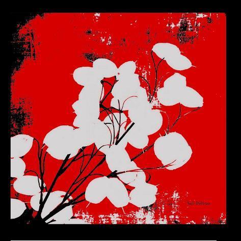 Red Money Plant Reproduction photographique