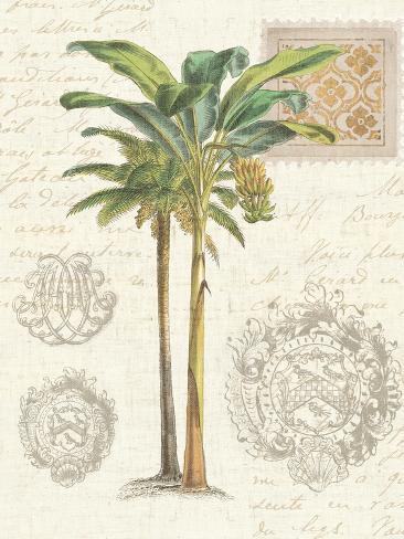 Vintage Palm Study I Reproduction giclée Premium