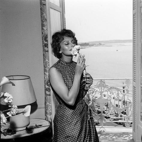 Italian Actress Sophia Loren Smelling a Flower in Her Hotel Room at the Cannes Film Festival Reproduction photographique