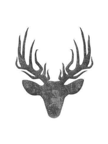 Black And White Aged Deer Mate Reproduction d'art