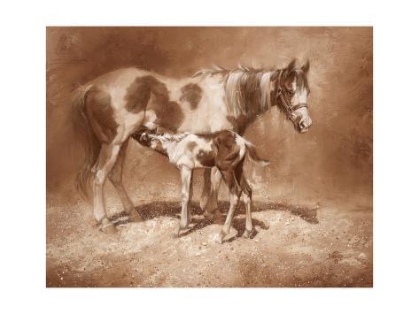 Sienna Paint Reproduction d'art
