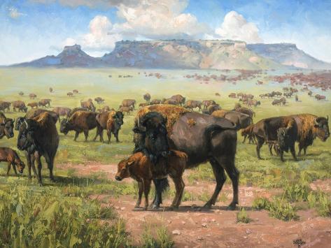 Spirit of the Plains Reproduction d'art