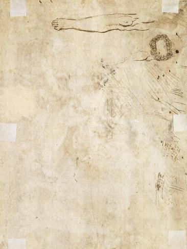 Study of a Leg, Flourish, and Doodles, 1610-17 Reproduction procédé giclée