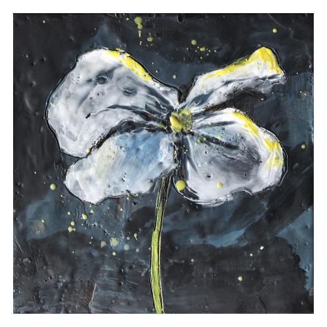 White Flower on Black 1 Reproduction d'art