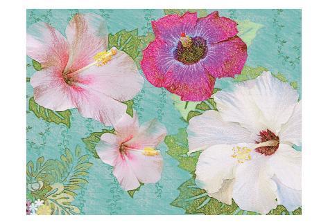 Fleurs d'hibiscus Reproduction d'art