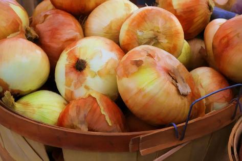 Sweet Onions at a Farmer's in Savannah, Georgia, USA Reproduction photographique