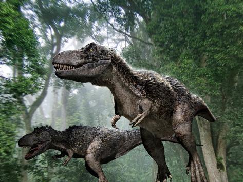 Tyrannosaurus Rex Dinosaurs Reproduction photographique