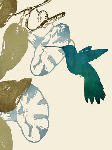 Hummingbird and Morning Glories Reproduction procédé giclée