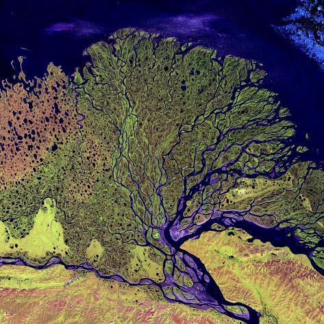 Lena River Delta, Russia Reproduction photographique