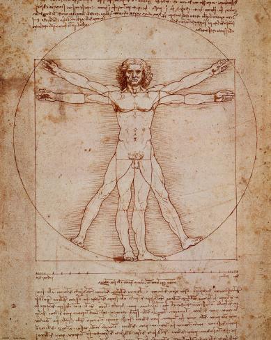 [Jeu] Association d'images - Page 18 Leonardo-da-vinci-l-homme-de-vitruve-vers-1492_a-G-350167-0